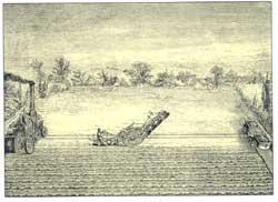 Ploegen Bayae